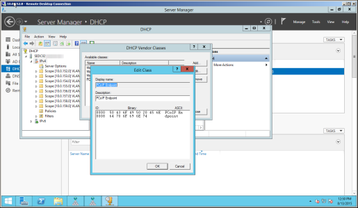 Configuring DHCP Options Discovery